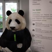 3D Panda im quer-kraft Büro neben Vereins-Displaybanner